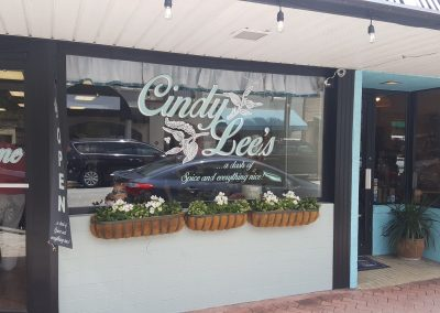 cindy lees in cocoa village
